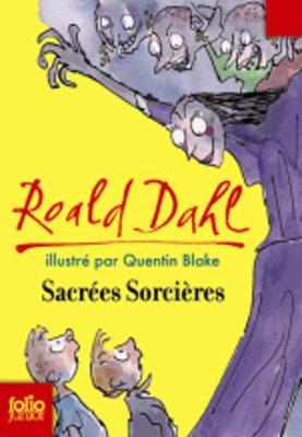 Sacrees sorcieres (Paperback)