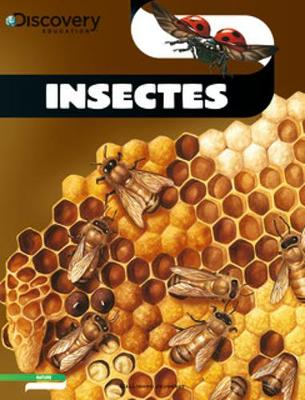 Discovery Education: Insectes (Paperback)