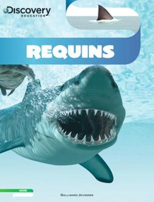 Discovery Education: Requins (Paperback)