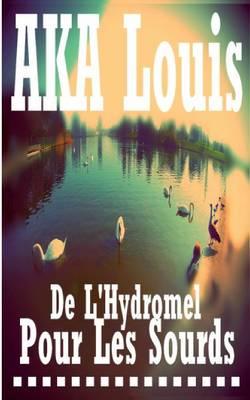 De L'Hydromel pour les Sourds: Traite inabouti, dilettante et poetique sur le sens de la realite (Paperback)