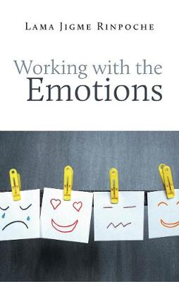 Working with Emotions (Paperback)