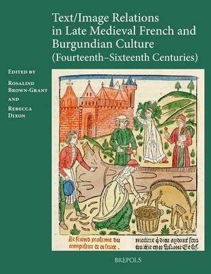 Text/image Relations in Late Medieval French and Burgundian Culture (Fourteenth-Sixteenth Centuries) (Hardback)