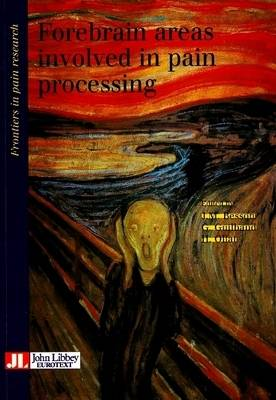 Forebrain Areas Involved in Pain Processing - Frontiers in Pain Research S. (Paperback)
