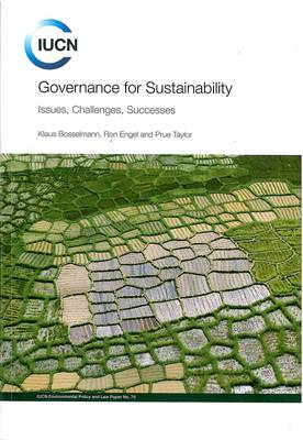 Governance for Sustainability: Issues, Challenges, Successes (Paperback)