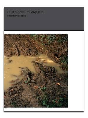 L'Illusion Du Tranquile (Paperback)