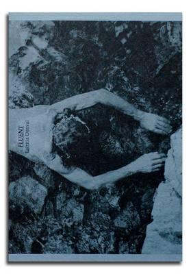 Fluent (Paperback)
