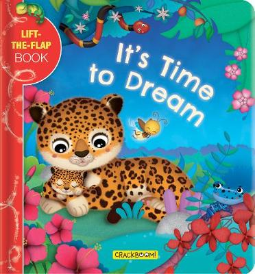 It's Time to Dream: A Lift-the-Flap Book (Board book)