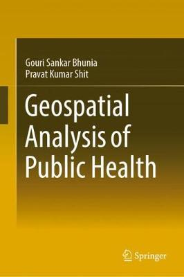 Geospatial Analysis of Public Health - Global Perspectives on Health Geography (Hardback)