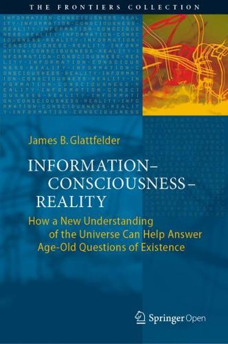 Information-Consciousness-Reality: How a New Understanding of the Universe Can Help Answer Age-Old Questions of Existence - The Frontiers Collection (Hardback)