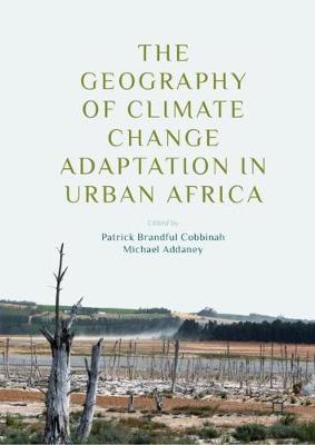 The Geography of Climate Change Adaptation in Urban Africa (Hardback)