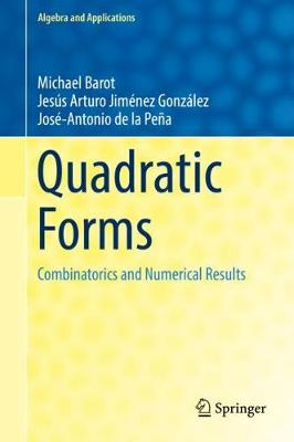 Quadratic Forms: Combinatorics and Numerical Results - Algebra and Applications 25 (Hardback)