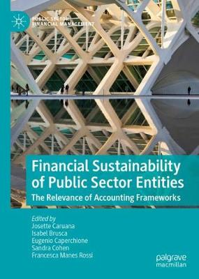 Financial Sustainability of Public Sector Entities: The Relevance of Accounting Frameworks - Public Sector Financial Management (Hardback)