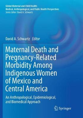 Maternal Death and Pregnancy-Related Morbidity Among Indigenous Women of Mexico and Central America: An Anthropological, Epidemiological, and Biomedical Approach - Global Maternal and Child Health (Paperback)