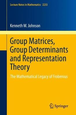 Group Matrices, Group Determinants and Representation Theory: The Mathematical Legacy of Frobenius - Lecture Notes in Mathematics 2233 (Paperback)