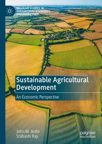 Sustainable Agricultural Development: An Economic Perspective - Palgrave Studies in Agricultural Economics and Food Policy (Hardback)
