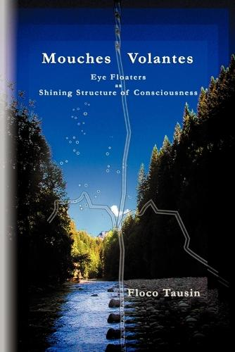 Mouches Volantes - Eye Floaters as Shining Structure of Consciousness (Paperback)