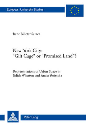 "New York City: ""Gilt Cage"" or ""Promised Land""?: Representations of Urban Space in Edith Wharton and Anzia Yezierska - Europaeische Hochschulschriften / European University Studies / Publications Universitaires Europeennes 465 (Paperback)"