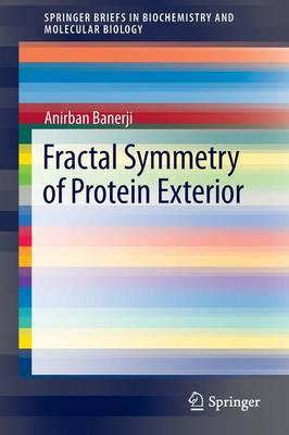 Fractal Symmetry of Protein Exterior - SpringerBriefs in Biochemistry and Molecular Biology (Paperback)