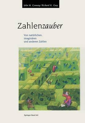 Zahlenzauber: Von Nat rlichen, Imagin ren Und Anderen Zahlen (Paperback)