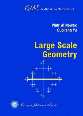 Large Scale Geometry - EMS Textbooks in Mathematics (Hardback)
