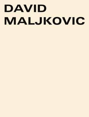 David Maljkovic: Sources in the Air (Paperback)