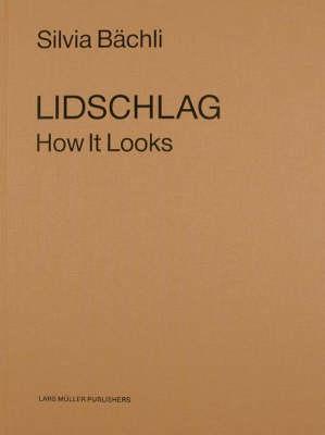 Lidschlag (Paperback)