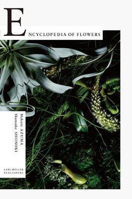 Encyclopedia of Flowers: Flower Works by Makoto Azuma Photographed by Shunsuke Shiinoki (Paperback)