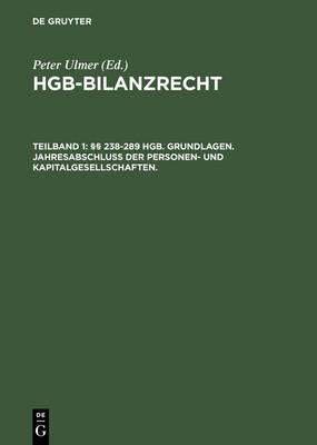 HGB-Bilanzrecht (Hardback)
