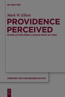 Providence Perceived: Divine Action from a Human Point of View - Arbeiten zur Kirchengeschichte 124