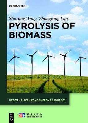 Pyrolysis of Biomass - GREEN - Alternative Energy Resources 1 (Hardback)