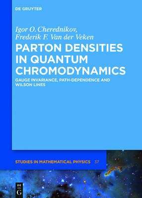 Parton Densities in Quantum Chromodynamics: Gauge Invariance, Path-Dependence and Wilson Lines - De Gruyter Studies in Mathematical Physics 37 (Hardback)