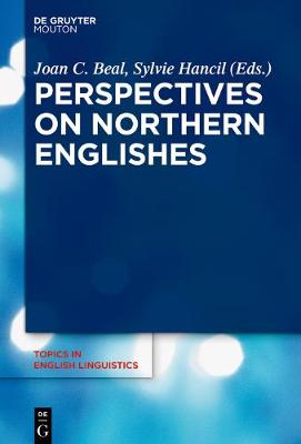 Perspectives on Northern Englishes - Topics in English Linguistics [TiEL] 96 (Hardback)