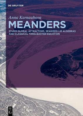 Meanders: Sturm Global Attractors, Seaweed Lie Algebras and Classical Yang-Baxter Equation (Hardback)