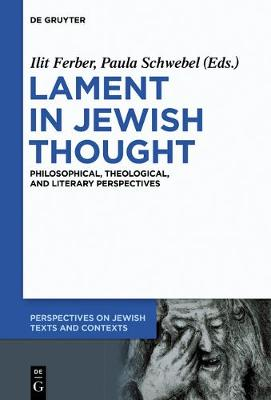 Lament in Jewish Thought: Philosophical, Theological, and Literary Perspectives - Perspectives on Jewish Texts and Contexts 2 (Paperback)