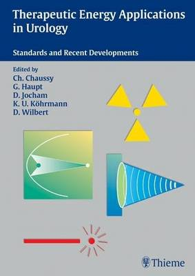 Therapeutic Energy Application in Urology: Standards and Recent Developments (Paperback)