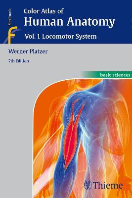 Color Atlas of Human Anatomy: Vol 1. Locomotor System (Paperback)