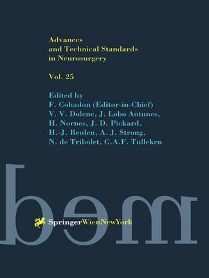Advances and Technical Standards in Neurosurgery - Advances and Technical Standards in Neurosurgery 25 (Hardback)