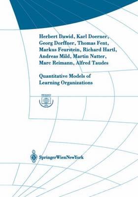 Quantitative Models of Learning Organizations - Interdisciplinary Studies in Economics and Management v. 3 (Hardback)