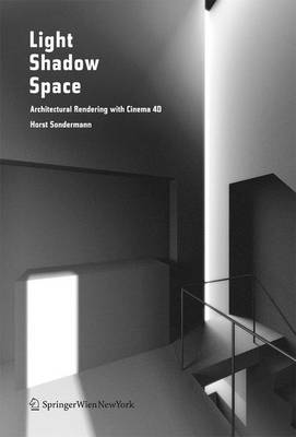 Light Shadow Space (Paperback)