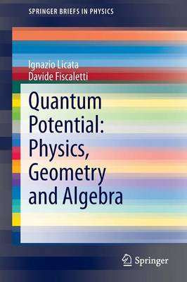 Quantum Potential: Physics, Geometry and Algebra - SpringerBriefs in Physics (Paperback)