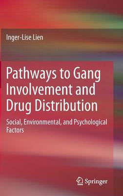 Pathways to Gang Involvement and Drug Distribution: Social, Environmental, and Psychological Factors (Hardback)