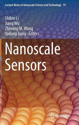 Nanoscale Sensors - Lecture Notes in Nanoscale Science and Technology 19 (Hardback)