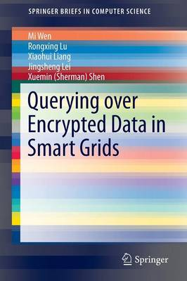 Querying over Encrypted Data in Smart Grids - SpringerBriefs in Computer Science (Paperback)