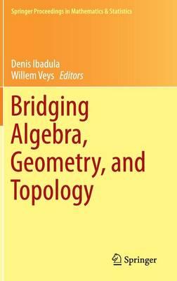 Bridging Algebra, Geometry, and Topology - Springer Proceedings in Mathematics & Statistics 96 (Hardback)