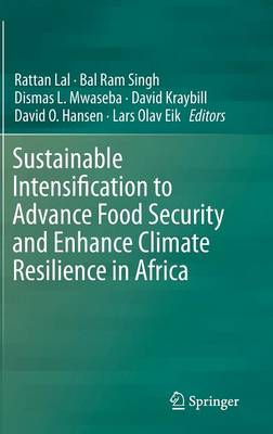 Sustainable Intensification to Advance Food Security and Enhance Climate Resilience in Africa (Hardback)