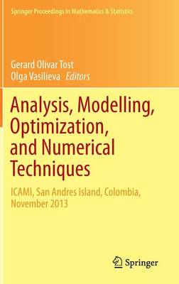 Analysis, Modelling, Optimization, and Numerical Techniques: ICAMI, San Andres Island, Colombia, November 2013 - Springer Proceedings in Mathematics & Statistics 121 (Hardback)