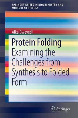 Protein Folding: Examining the Challenges from Synthesis to Folded Form - SpringerBriefs in Biochemistry and Molecular Biology (Paperback)