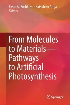 From Molecules to Materials: Pathways to Artificial Photosynthesis (Hardback)