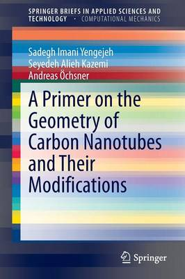 A Primer on the Geometry of Carbon Nanotubes and Their Modifications - SpringerBriefs in Computational Mechanics (Paperback)