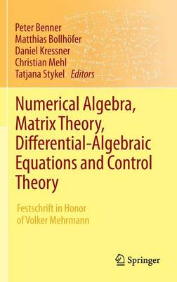 Numerical Algebra, Matrix Theory, Differential-Algebraic Equations and Control Theory: Festschrift in Honor of Volker Mehrmann (Hardback)